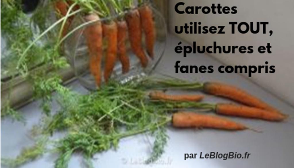 Astuces #zerodechet pour tout utiliser de vos carottes, épluchures et fanes compris
