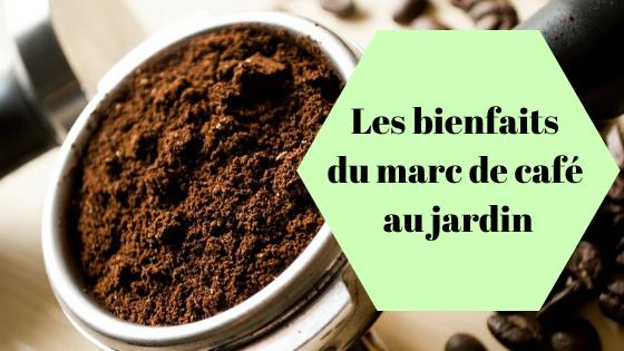 Réutilisez votre marc de café dans votre jardin et potager. Utilisez ses bienfaits pour vos plantes, réduisez votre gaspillage alimentaire (zéro déchet) et découvrez la permaculture.