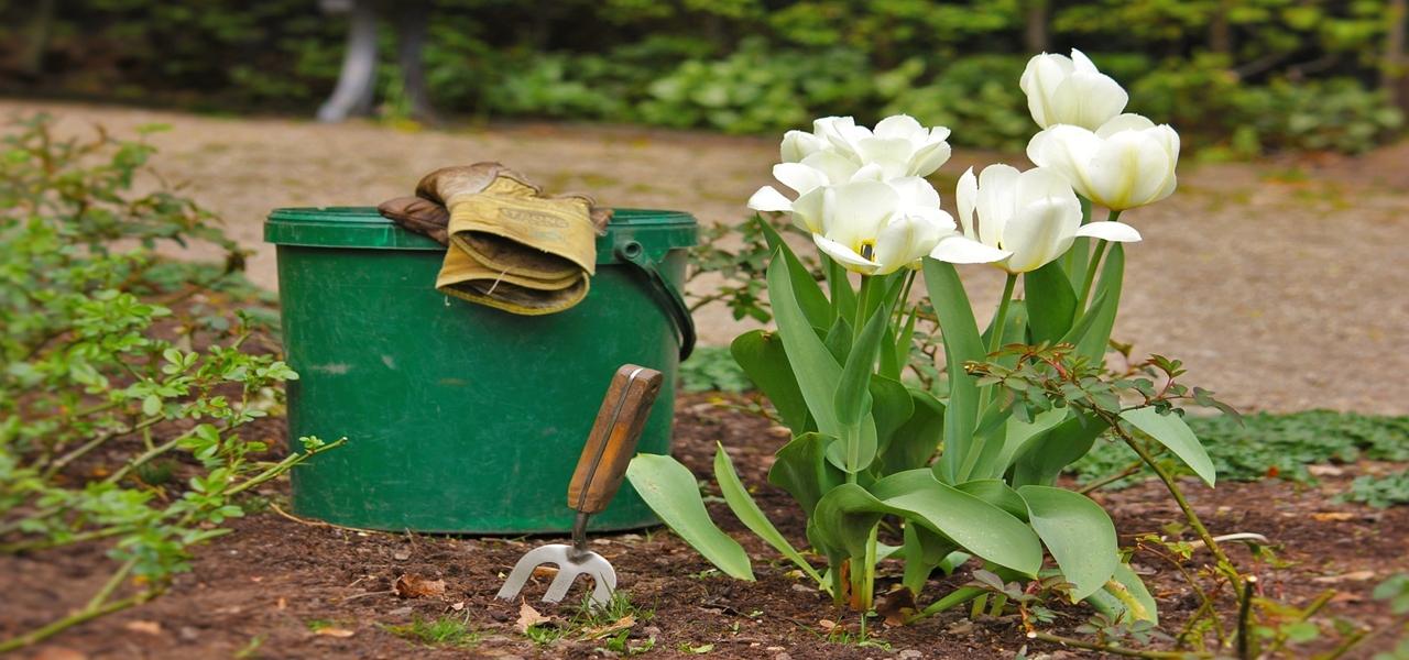 nettoyer votre jardin à coup d'huile de coude