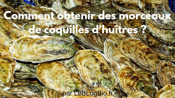 Savoir obtenir des morceaux de coquilles d'huîtres