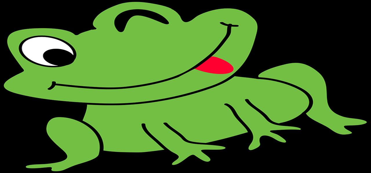 Crapaud et grenouilles raffolent de vos limaces #permaculture #jardin #potager