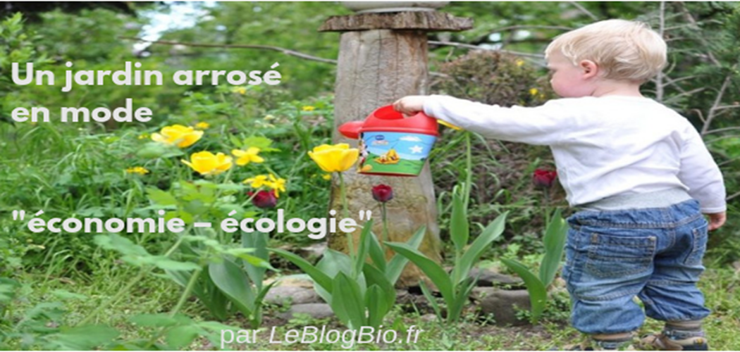"""Un jardin arrosé en mode """"économie – écologie"""""""