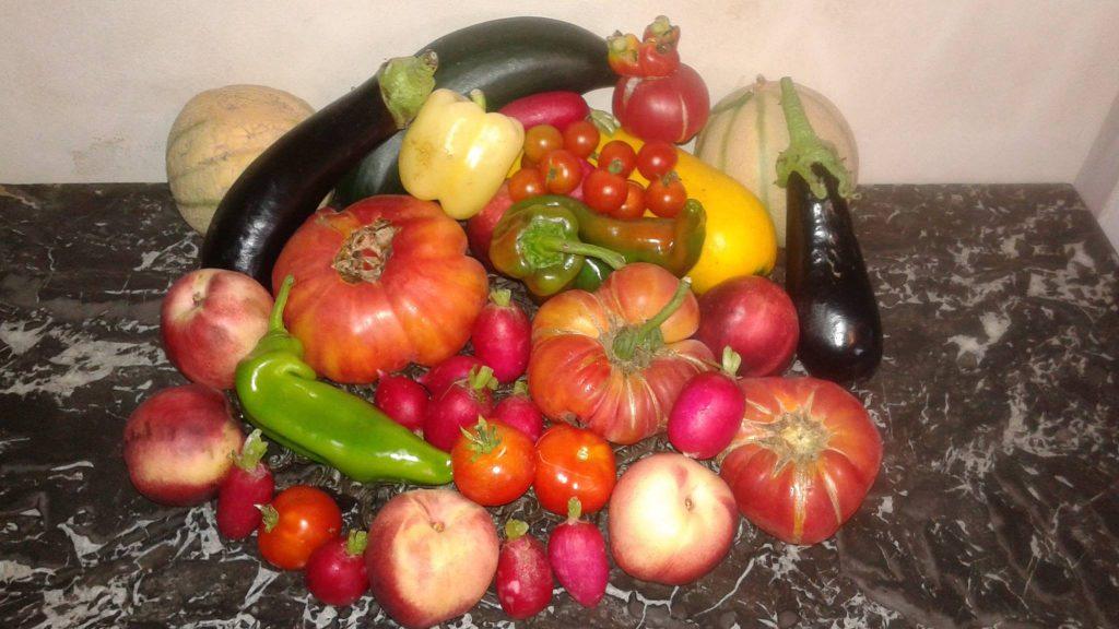 Les produits de saison de juillet 2018 Fruits, légumes, champignons, viandes, volailles, poissons #juin #menu #atable economie , anti gaspillage #eté