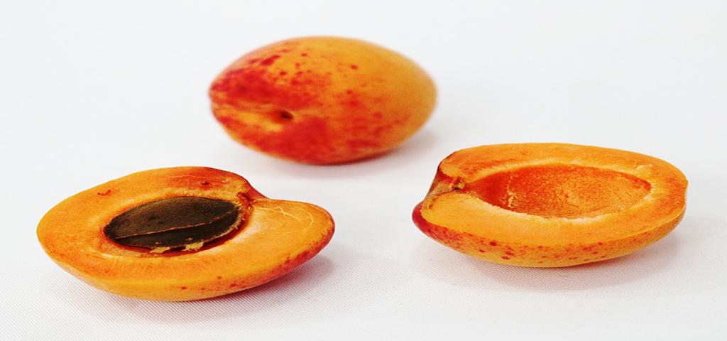 #zerodechet #antigaspi #abricot#fruit #diy #homemade #recup