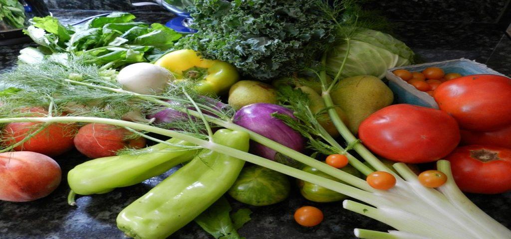 Les produits de saison de aout 2018 Fruits, légumes, champignons, viandes, volailles, poissons #menu #atable economie , anti gaspillage #eté