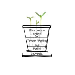 Composition d'un gobelet CupPlante #potagerbio #balcon #urbangarden #boxjardinage #potager #startup #startuplife #pota-ger #gardening #nature #urbangarden #veggies #cupplante #plantes #biodégradable #zerodechet #zerowaste