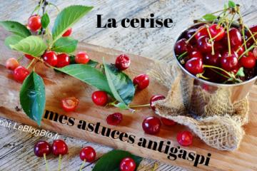 Comment faire de votre cerise un fruit antigaspi ?