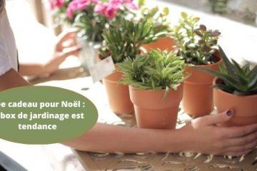 Idée cadeau pour Noël la box de jardinage est tendance