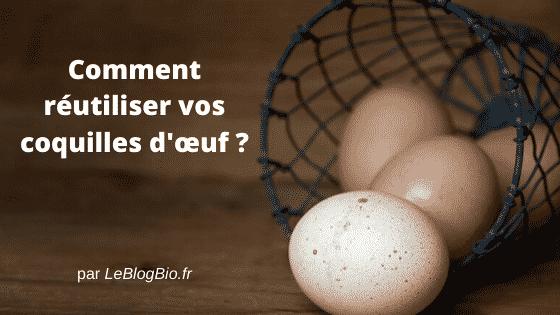 Ne jetez plus vos coquilles d'œuf à la poubelle et profitez de leurs apports nutritifs et bienfaits. Dans votre jardin, votre maison ou encore pour votre santé, réutilisez ce soi-disant déchet avec mes quelques astuces anti-gaspi et écologiques.