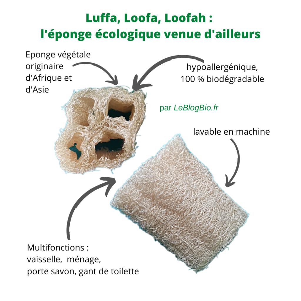 Quelle que soit sa forme et son orthographe d'origine, cette éponge végétale originaire d'Afrique et d'Asie sèche très vite. Hypoallergénique, lavable en machine et 100% biodégradable, elle s'utilisera partout dans votre maison. Avec, certains nettoieront leur vaisselle, leur cuisine ou leur salle de bain, d'autres s'en serviront comme gant de toilette (ou de peeling), d'autres encore en feront un porte-savon. Une chose est sûre : ce produit est très apprécié.