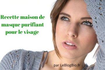Recette DIY de masque purifiant et hydratant pour le visage (fait maison )