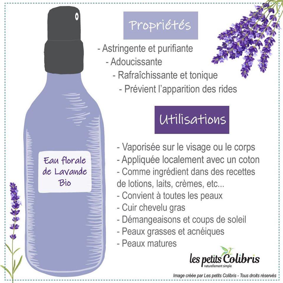 Les bienfaits de l'eau florale de lavande sur la peau - LesPetitsColibris