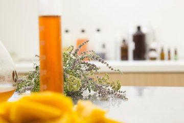 Des astuces bio pour se débarrasser de l'humidité dans la maison en hiver