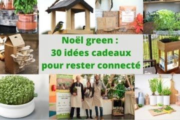 Noël green 30 idées cadeaux pour rester connecté à la nature